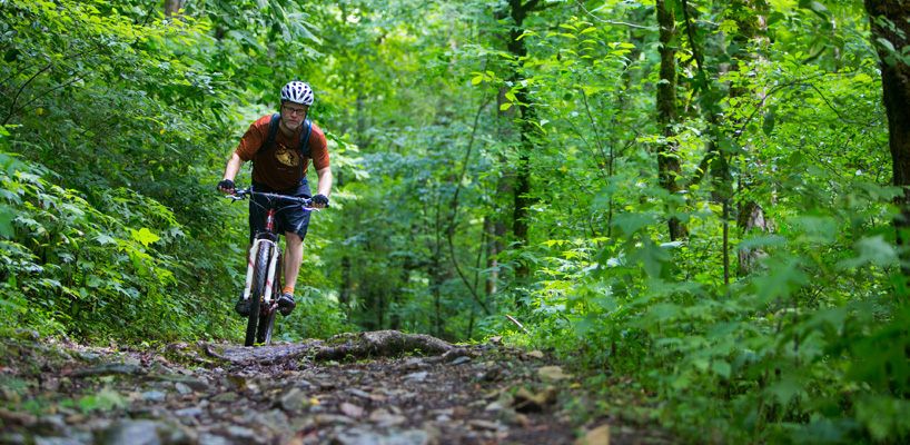 man riding a mountian bike in the woods