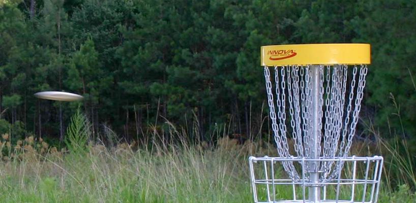 disc golf goal