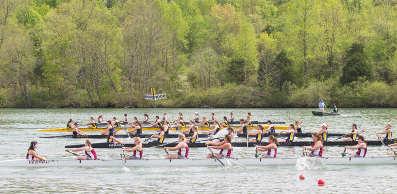 regatta rowing teams