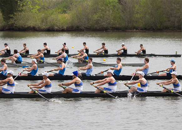 side view of three rowing teams