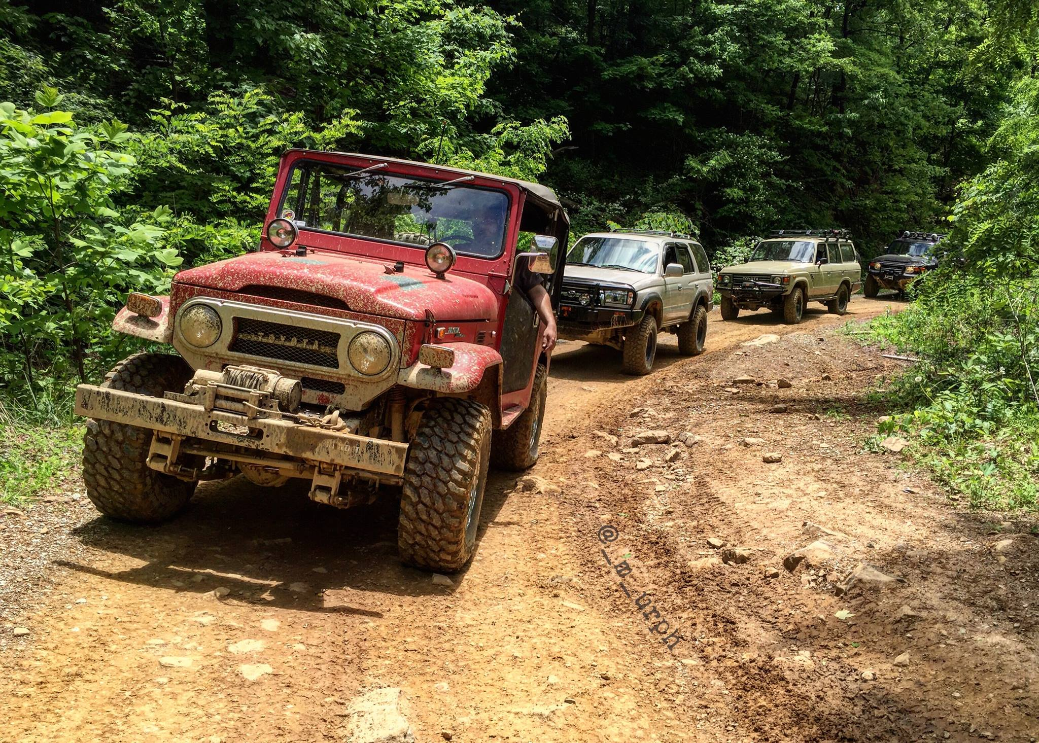 off road vehicles in the woods