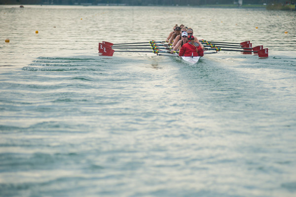 cardinal invitational regatta rowing team